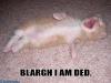 blargh_i_am_dead