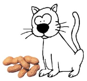 chat_cacahuetes